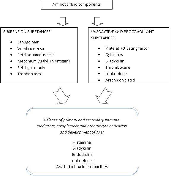Amniotic Fluid Embolism - Clinical Pain Advisor