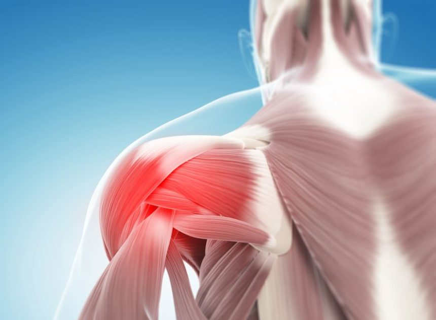 musculoskeletal pain in the shoulder