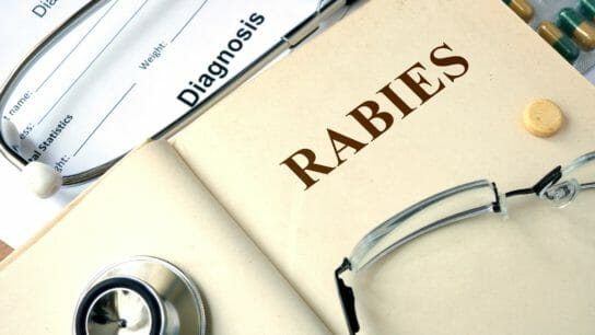 Word Rabies on a paper and pills on the wooden table.